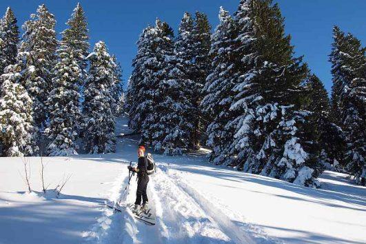 Skibergsteigen als Outdoor Teambuilding