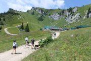 Leadership Brain walk im Bayerischen Voralpenland