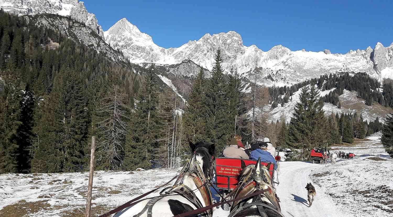 Winterfreuden Pakete für Bustourististiker Pferdekutschen zur Hofalm